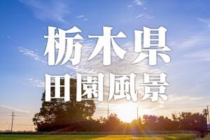 【微速度撮影】2015夏 栃木県の田園風景 (宇都宮市・鹿沼市) 4k タイムラプス